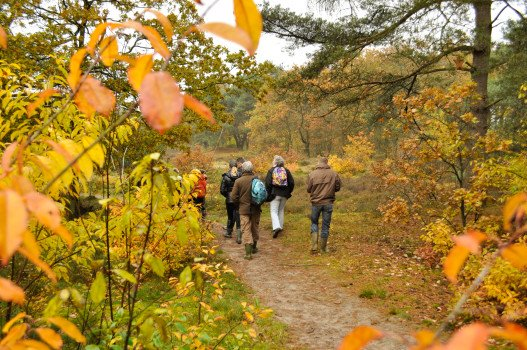 Herfstvakantie Camping - Visit Hardenberg