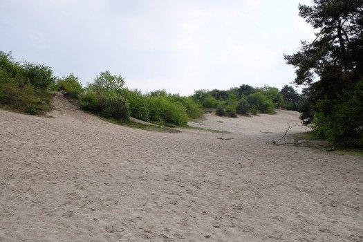 De Belten Camping - Visit Hardenberg