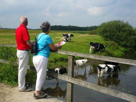 Wandelen in Overijssel - Visit Hardenberg