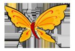 B&B De Vlinder
