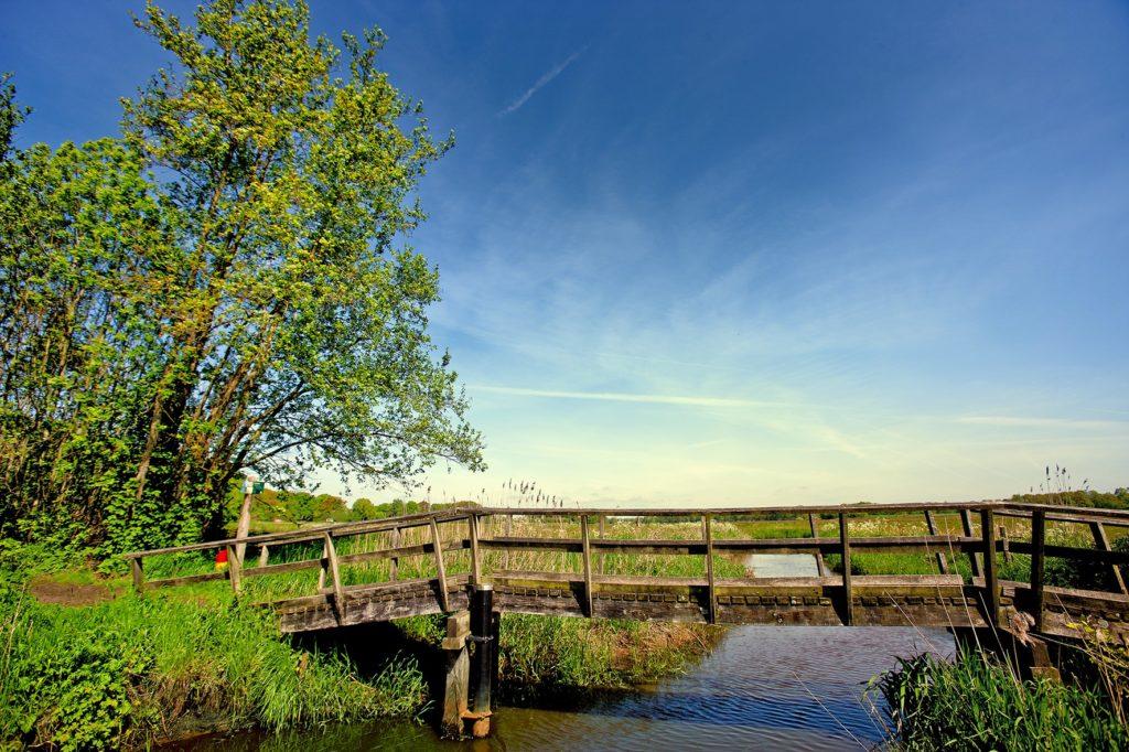 Schitterende natuur in de regio Hardenberg