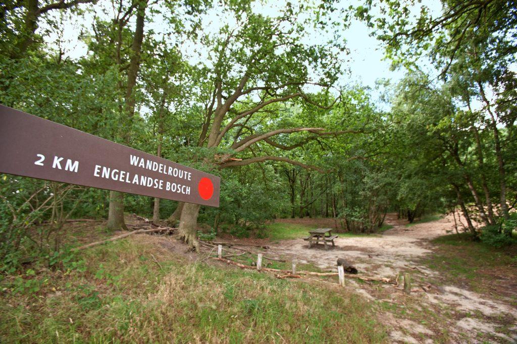 Het Engelandse Bos