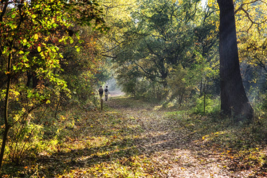 Wandelroute toen en nu - Visit Hardenberg