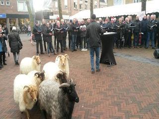 Kerstmarkt mannenkoor - Visit Hardenberg