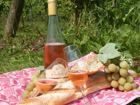 Wijngoed Reestlandhoeve - Visit Hardenberg