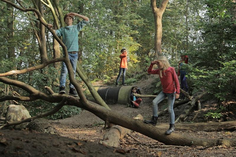 Kindermiddag 'Uilenballen pluizen' - Visit Hardenberg