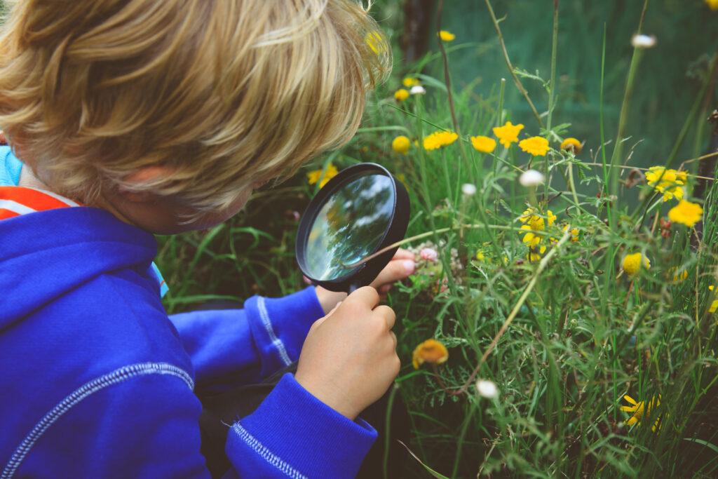 Tip 5: Ontdekkingsreis in de tuin