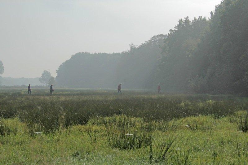 5. Wandeling in Balkbrug