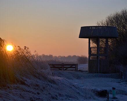 uitkijktoren winters landschap - Visit Hardenberg