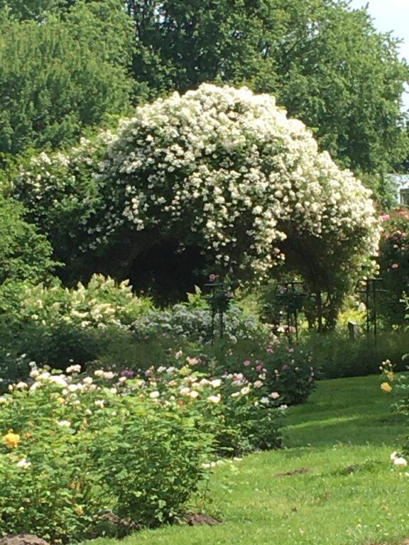 Vechtdal-tuinen route - Visit Hardenberg
