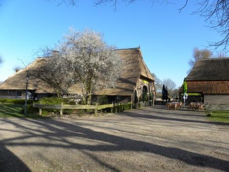 Pannenkoekenboerderij De Ganzenhoeve - Visit Hardenberg