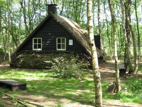 Levend VeenmuseumVriezenveenseveld - Visit Hardenberg