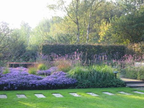 Cursus Botanisch Tekenen - Visit Hardenberg