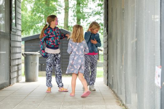 Dierendag Bij Landhoeve De Zwiese - Visit Hardenberg