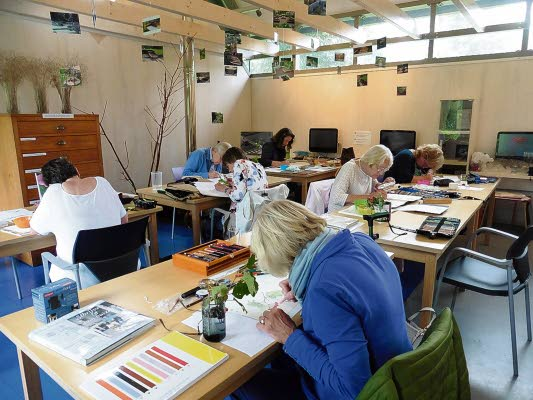 Cursus Botanisch Tekenen Door Jenny Post - Visit Hardenberg
