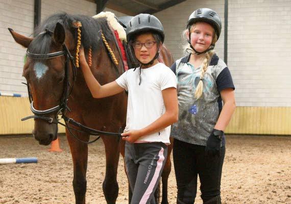 Pony Dag-kamp - Visit Hardenberg